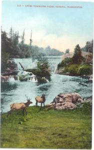 Upper Tumwater Falls, Olympia, Washington, WA, Divided Back