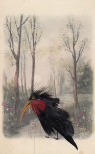 Attached Feathers ; Crow in woods , 00-10s