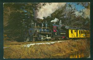 Edaville No 8 Steam Passenger Train Cranberry Bogs MA Railroad Postcard