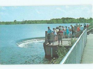 Pre-1980 FISH SPILLWAY Linesville - Near Meadville & Conneaut Lake PA AE4125