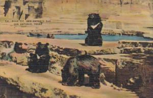 Texas San Antonio Bear Pit San Antonio Zoo