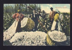 NEW MARKET VIRGINIA BLACK AMERICANA BLACK FARMING COTTON VINTAGE POSTCARD