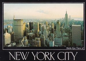 New York City Birds Eye View