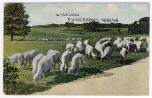 Scene Near Vanceboro, Maine