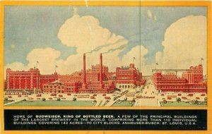 St Louis Missouri Advertising C-1910 Budweiser Beer Postcard 21-10559