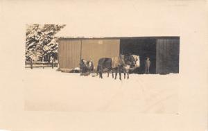 Lents OR (Portland) Winter of 1915/16 Charlie in Barn~Horse-Drawn Sled~RPPC PC