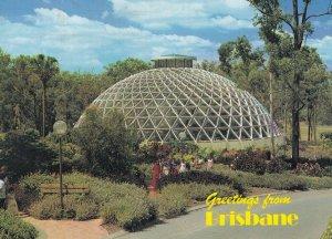 Brisbane Australia Tropical Display House Botanic Gardens Postcard
