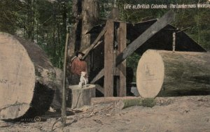 Lumberman's Workshop, B.C., Canada, 1908