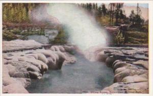 Oblong Geyser Yellowstone National Park