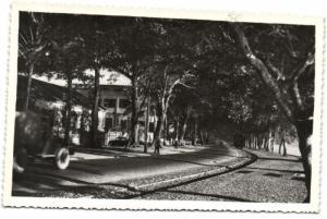 CPA Vietnam Indochine ANNAM Tourane - Rue Longeant la Rivière (62137)