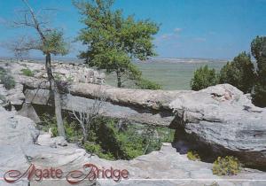 Arizona Petrified Forest National Park Agate Bridge