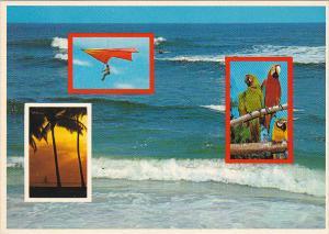 Multi View Miami Florida