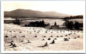 1940s MOSCOW, Idaho RPPC Real Photo Postcard HARVEST TIME Farm Field Panorama