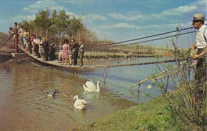 Canada Saskatoon Swinging Bridge Golden Gate Wild Animal & Bird Park Sash...