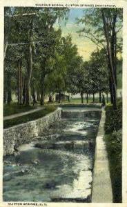 Sanitarium at Clifton Springs Clifton Springs NY 1920