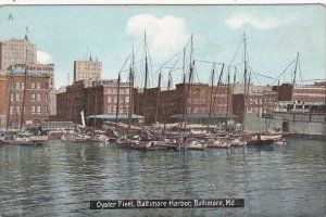 Maryland Baltimore Oyster Fleet In Baltimore Harbor sk6320