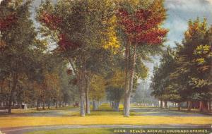 Colorado Springs Colorado~Nevada Avenue~Homes~Tree Lined Grassy Road~1910 PC