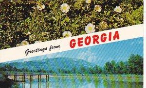 Greetings From Georgia Stone Mountain and Cherokee Rose