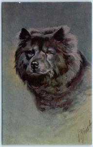 Signed Artist RIVST  -  Black CHOW CHOW Dog  Postcard
