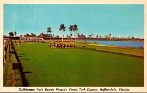 Florida Hallandale Gulfstream Park World's Finest Turf Course Horse Racing