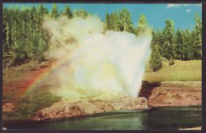 Riverside Geyser,Yellowstone Postcard BIN