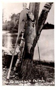 19 lb landlock Salmon