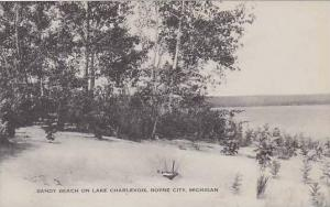 Michigan Boyne City Sandy Beach On Lake Charlevoix Artvue