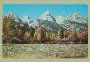 Teton Range Photo Postcard Wyoming Mountain Scenic