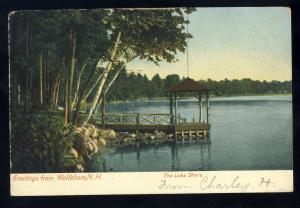 Wolfeboro, New Hampshire/NH Postcard, The Lake Shore, Dock