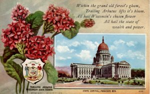 WI - State Flower & Capitol. Trailing Arbutus & Madison