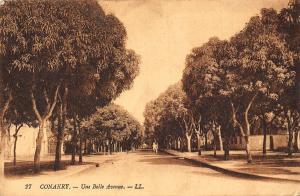 Guinea Conakry Une Belle Avneue Street Promenade Cyclist Postcard