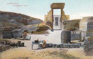 DENDERAH , Egypt , 00-10s ; Temple of Denderah #2