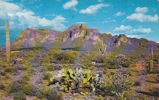Arizona Mesa The Superstition Range
