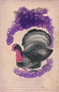 THANKSGIVING; Embossed, Greetings, Wild Turkey & Violet Flowers, 00-10s