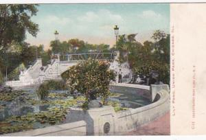 Illinois Chicago Lily Pond In Union Park