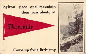 Sylvan Glens & Mountain Dens at Waterville Maine~Come Up~1912 Pennant Postcard