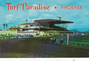 Arizona Phoenix Turf Paradise Horse Racing