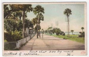 Beach Street Daytona Florida 1908 postcard