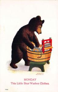 Bernhardt Wall Monday This Little Bear Washes Clothes 1906 Postcard
