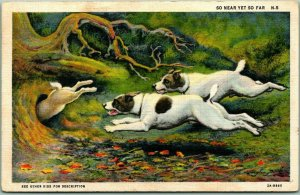 1938 Animal Greetings Postcard Dogs Chase Rabbit, Diving into Hole - Linen