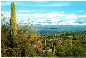 Arizona Phoenix Snow Covered Four Peaks With Saguaro Cactus