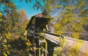 South Carolina Historic Old Covered Bridge Chapmans Bridge