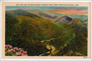 NC - The Loop, Great Smoky Mts Nat Park