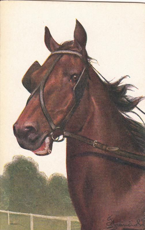 ARTIST SIGNED HORSE EQUESTRIAL ANTIQUE POSTCARD