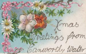 Greetings From CAMWORTHY WATER Antique REAL GLITTER Sparkle Cornwall Postcard