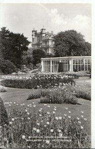 Nottinghamshire Postcard - Camellia House Gardens - Wollaton Hall - Ref 11951A