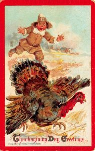 THANKSGIVING DAY GREETINGS~YOUNG PILGRIM CHASES TURKEY~FRANCES BRUNDAGE POSTCARD