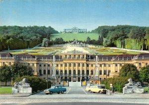 Vienna Schloss Schonbrunn u Gloriette Castle Vintage Cars Postcard