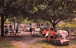 New London Connecticut~Ocean Beach Park Picnic Grounds~Crowded Tables~1960s PC