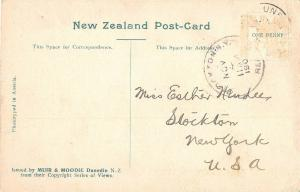 Dunedin New Zealand outside view of The Octagon antique postcard (Z3091)